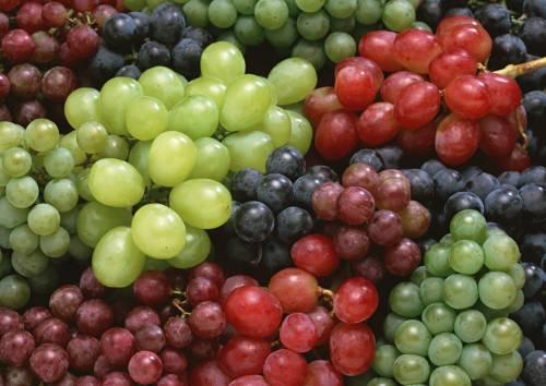 грозди разных сортов винограда фото Овощи и фрукты - Обои ...
